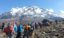 7 Days Mt. Kilimanjaro Climb